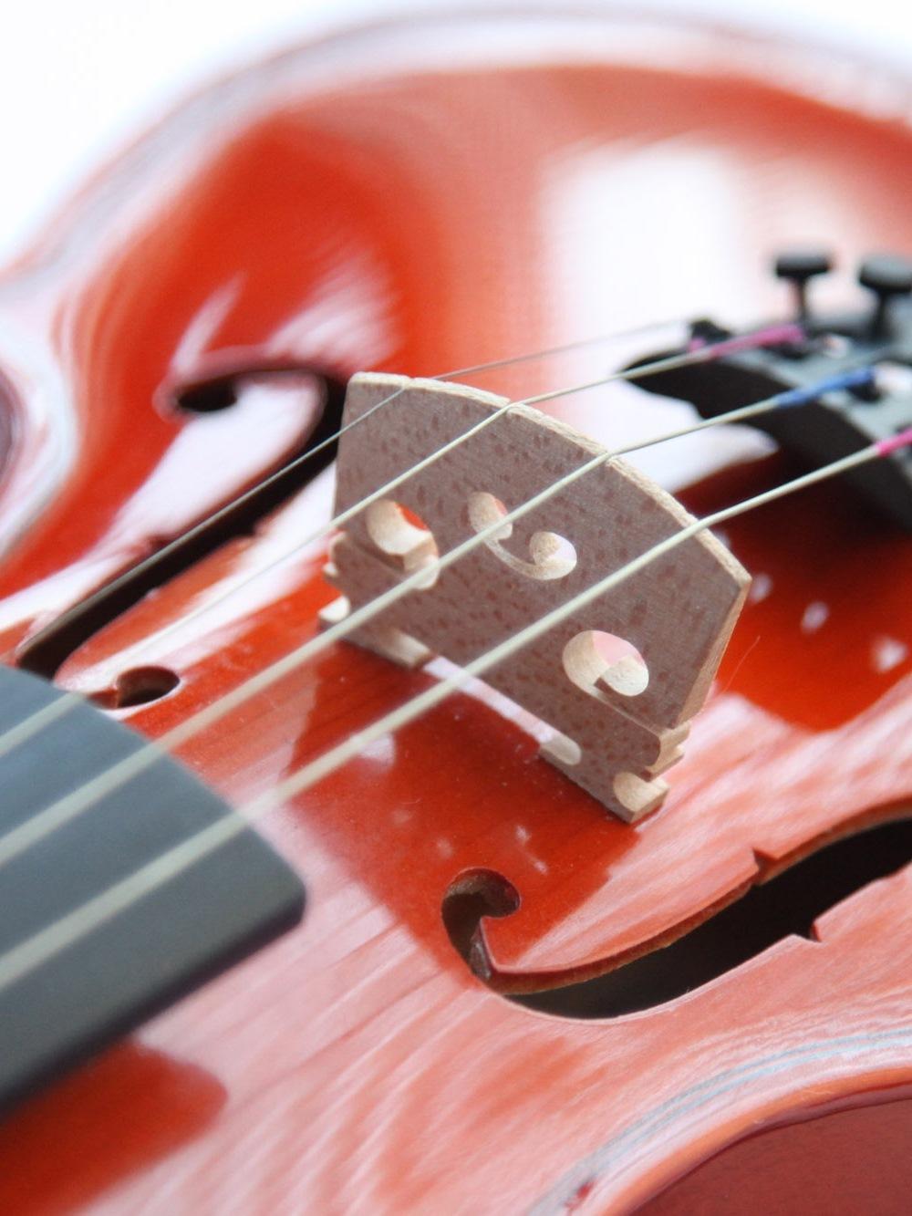 violin_image2.jpg